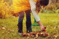 15 conseils de jardinage pour octobre