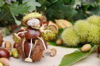 5 activités vertes pour les enfants pendant les vacances d'automne