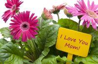Cadeaux de la Fête des mères pour le jardin