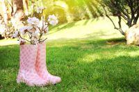 Conseils flamboyants pour le mois de mars pour la maison et le jardin