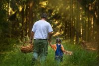 Tendance : forêt nourricière